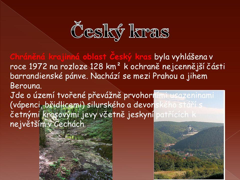 Chráněná krajinná oblast Český kras byla vyhlášena v roce 1972 na rozloze 128 km² k ochraně nejcennější části barrandienské pánve. Nachází se mezi Pra