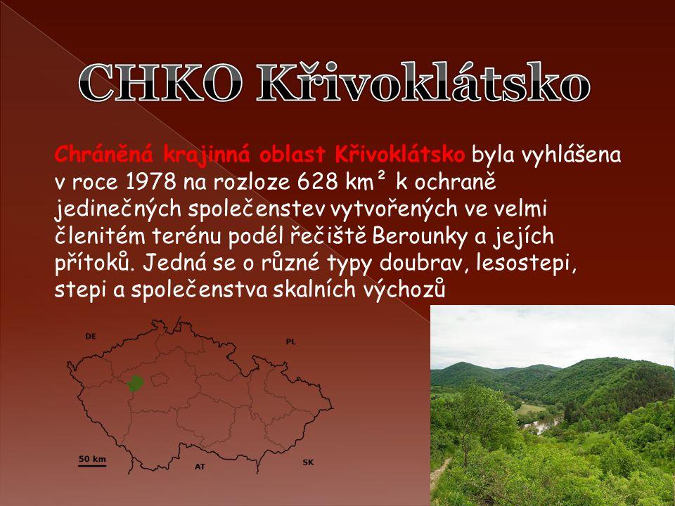 Chráněná krajinná oblast Křivoklátsko byla vyhlášena v roce 1978 na rozloze 628 km² k ochraně jedinečných společenstev vytvořených ve velmi členitém t