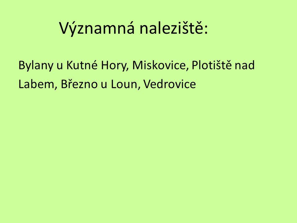 Významná naleziště: Bylany u Kutné Hory, Miskovice, Plotiště nad Labem, Březno u Loun, Vedrovice
