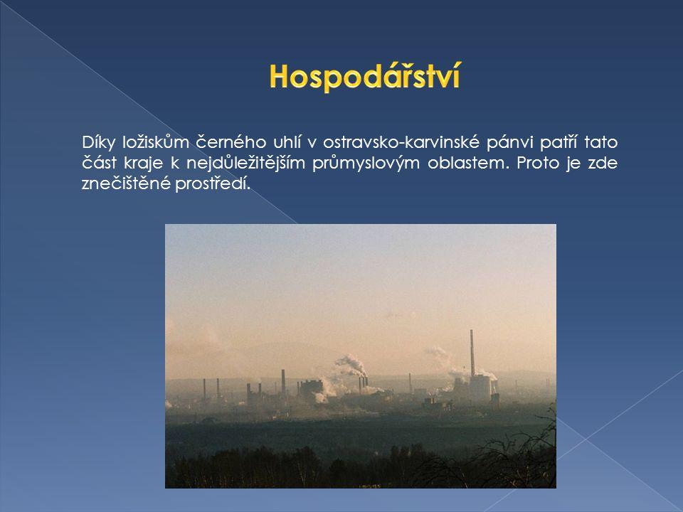 Díky ložiskům černého uhlí v ostravsko-karvinské pánvi patří tato část kraje k nejdůležitějším průmyslovým oblastem.