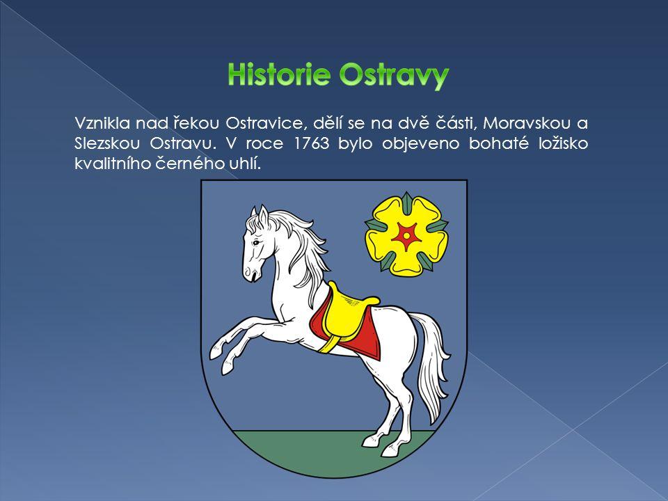 V Ostravě jsou čtyři stálá divadla.Působí zde mezinárodně uznávaná Janáčkova filharmonie Ostrava.