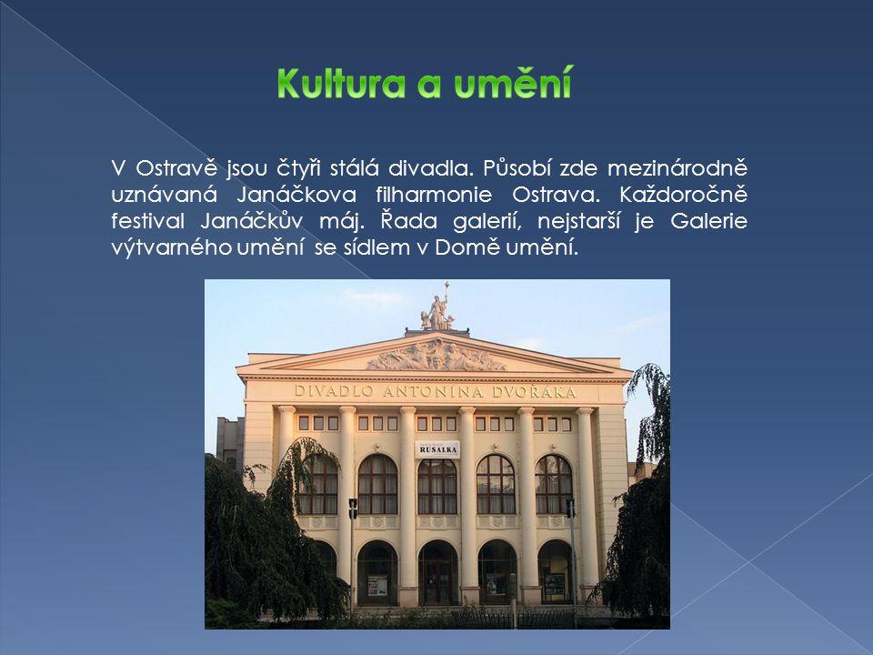 V Ostravě jsou čtyři stálá divadla. Působí zde mezinárodně uznávaná Janáčkova filharmonie Ostrava.