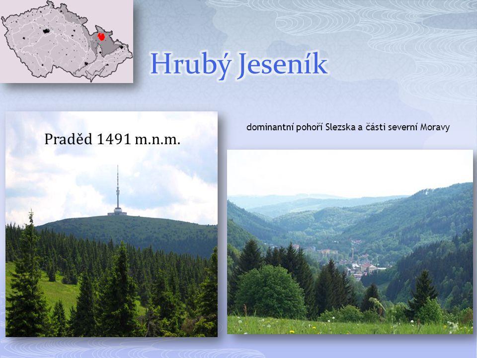 Praděd 1491 m.n.m. dominantní pohoří Slezska a části severní Moravy
