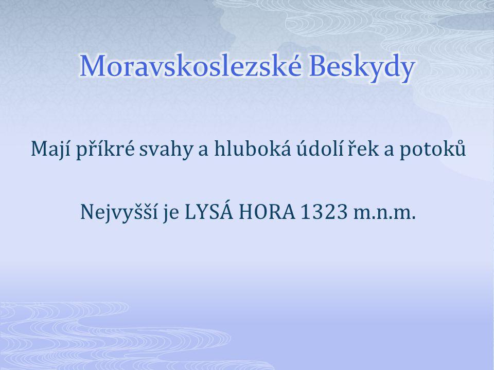 Mají příkré svahy a hluboká údolí řek a potoků Nejvyšší je LYSÁ HORA 1323 m.n.m.