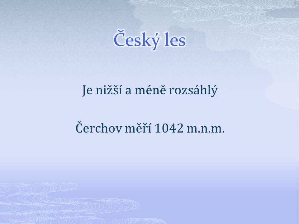 Je nižší a méně rozsáhlý Čerchov měří 1042 m.n.m.