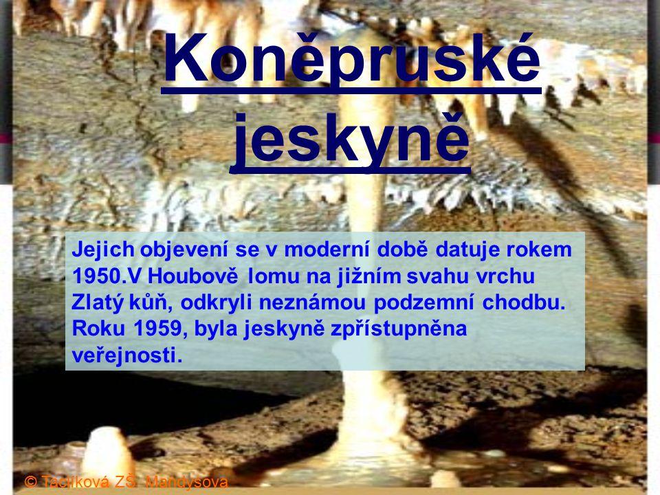 Koněpruské jeskyně Jejich objevení se v moderní době datuje rokem 1950.V Houbově lomu na jižním svahu vrchu Zlatý kůň, odkryli neznámou podzemní chodbu.