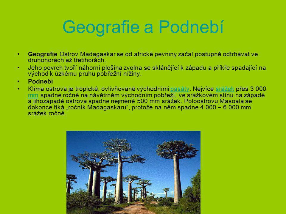 Historie První obyvatelé Madagaskaru sem připlavili na dvojitých kánoích přes Indii a východní Afriku z Indonésie asi před 2000 lety.