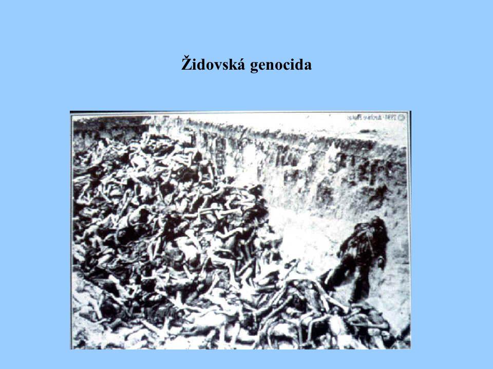 Židovská genocida