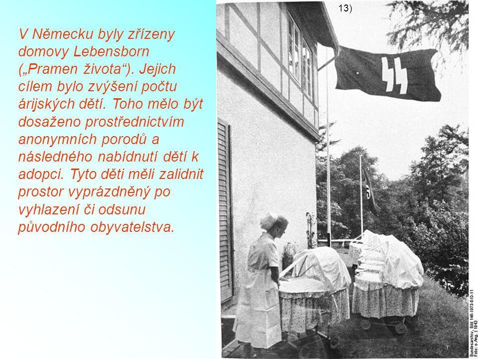 """V Německu byly zřízeny domovy Lebensborn (""""Pramen života""""). Jejich cílem bylo zvýšení počtu árijských dětí. Toho mělo být dosaženo prostřednictvím ano"""