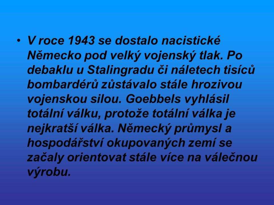Situace před bitvou na východní frontě Bleskový postup Němců v roce 1941 byl zastaven až na předměstích Moskvy.