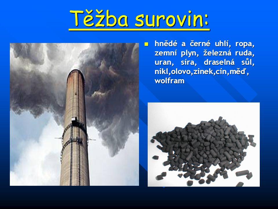 Těžba surovin: hnědé a černé uhlí, ropa, zemní plyn, železná ruda, uran, síra, draselná sůl, nikl,olovo,zinek,cín,měď, wolfram