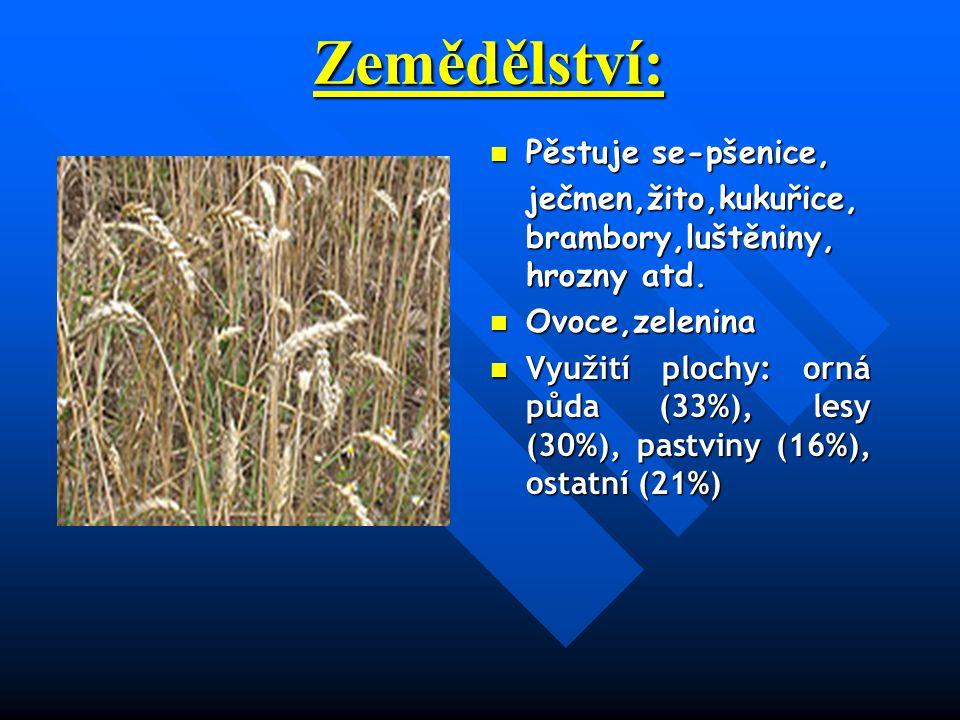 Zemědělství: Pěstuje se-pšenice, ječmen,žito,kukuřice, brambory,luštěniny, hrozny atd.