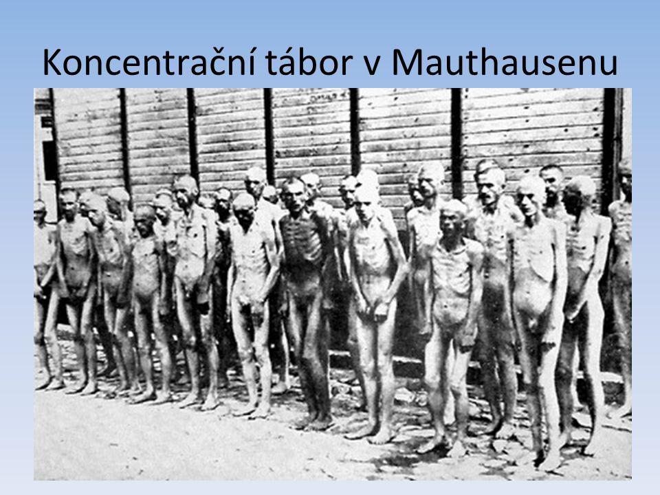 Koncentrační tábor v Mauthausenu