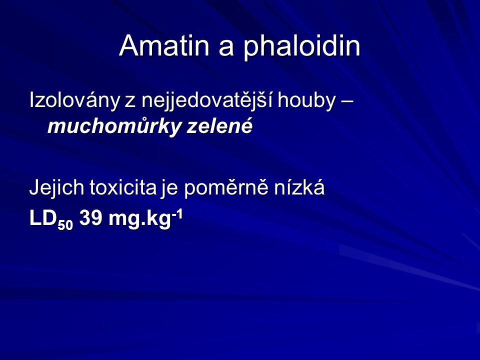 Amatin a phaloidin Izolovány z nejjedovatější houby – muchomůrky zelené Jejich toxicita je poměrně nízká LD 50 39 mg.kg -1
