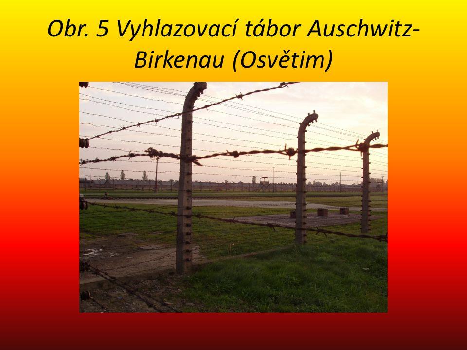 Obr. 5 Vyhlazovací tábor Auschwitz- Birkenau (Osvětim)