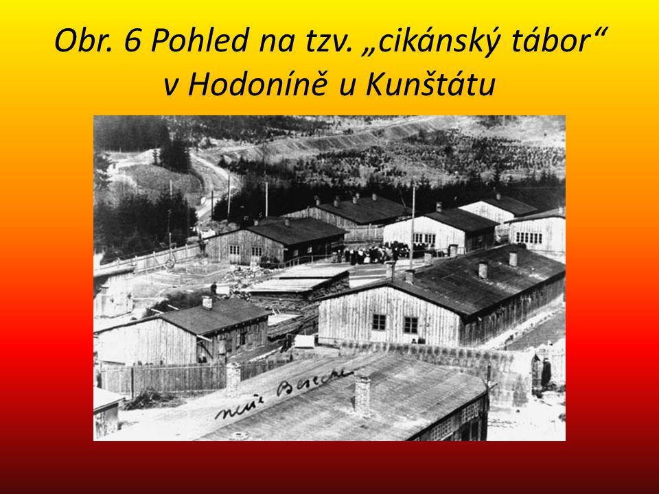 """Obr. 6 Pohled na tzv. """"cikánský tábor"""" v Hodoníně u Kunštátu"""