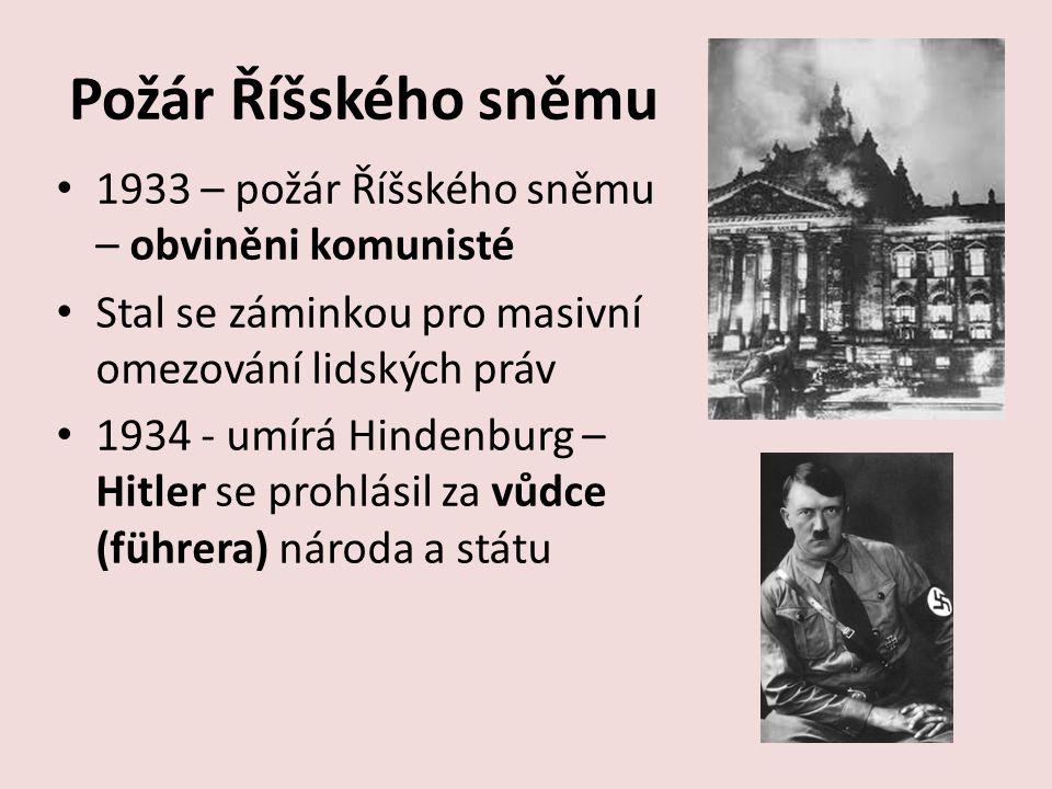 Nacistická diktatura Likvidace demokracie, počátek totality Zakázány všechny politické strany kromě NSDAP Zlikvidovány svobodné odbory, zavedena cenzura Rozpuštěn Říšský sněm Odpůrci nového pořádku byli posláni do vězení a koncentračních táborů