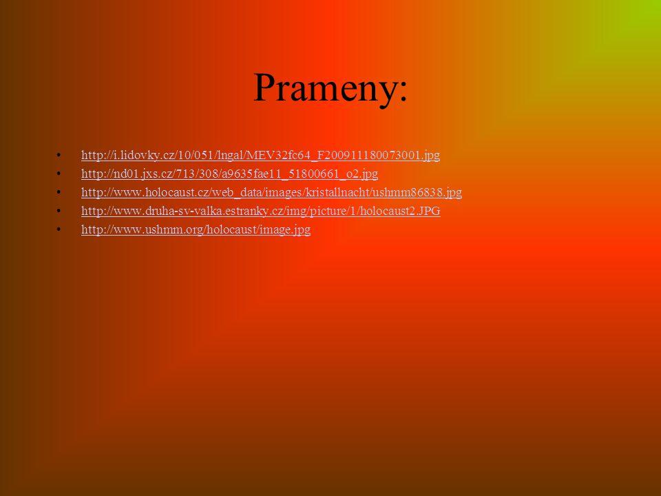 Prameny: http://i.lidovky.cz/10/051/lngal/MEV32fc64_F200911180073001.jpg http://nd01.jxs.cz/713/308/a9635fae11_51800661_o2.jpg http://www.holocaust.cz/web_data/images/kristallnacht/ushmm86838.jpg http://www.druha-sv-valka.estranky.cz/img/picture/1/holocaust2.JPG http://www.ushmm.org/holocaust/image.jpg