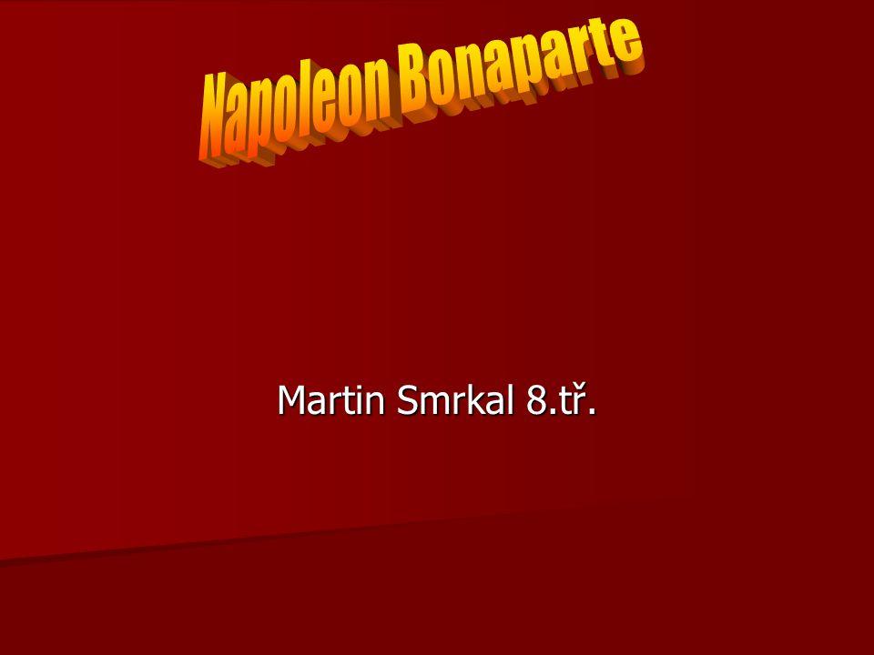 Martin Smrkal 8.tř.
