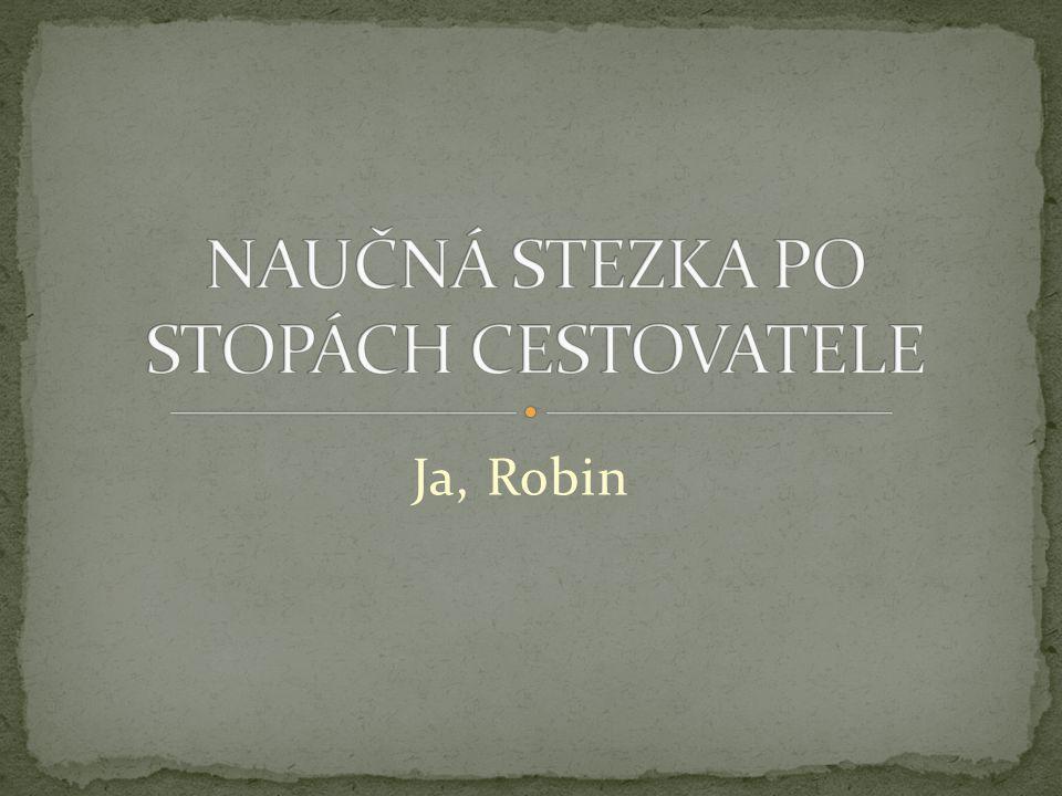 Ja, Robin byl také vášnivý botanik Během svého života vyšlechtil mnoho nových druhů rostlin Zde vidíme jeho největší chloubu Listnatý strom, z kterého se postupem času stane strom jehličnatý