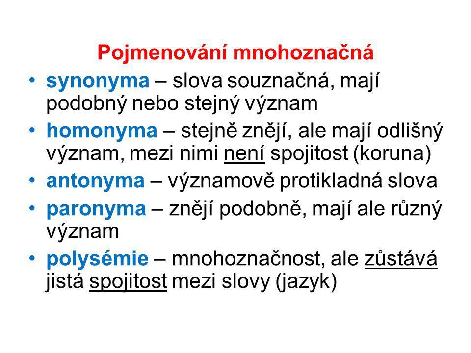 Pojmenování mnohoznačná synonyma – slova souznačná, mají podobný nebo stejný význam homonyma – stejně znějí, ale mají odlišný význam, mezi nimi není s