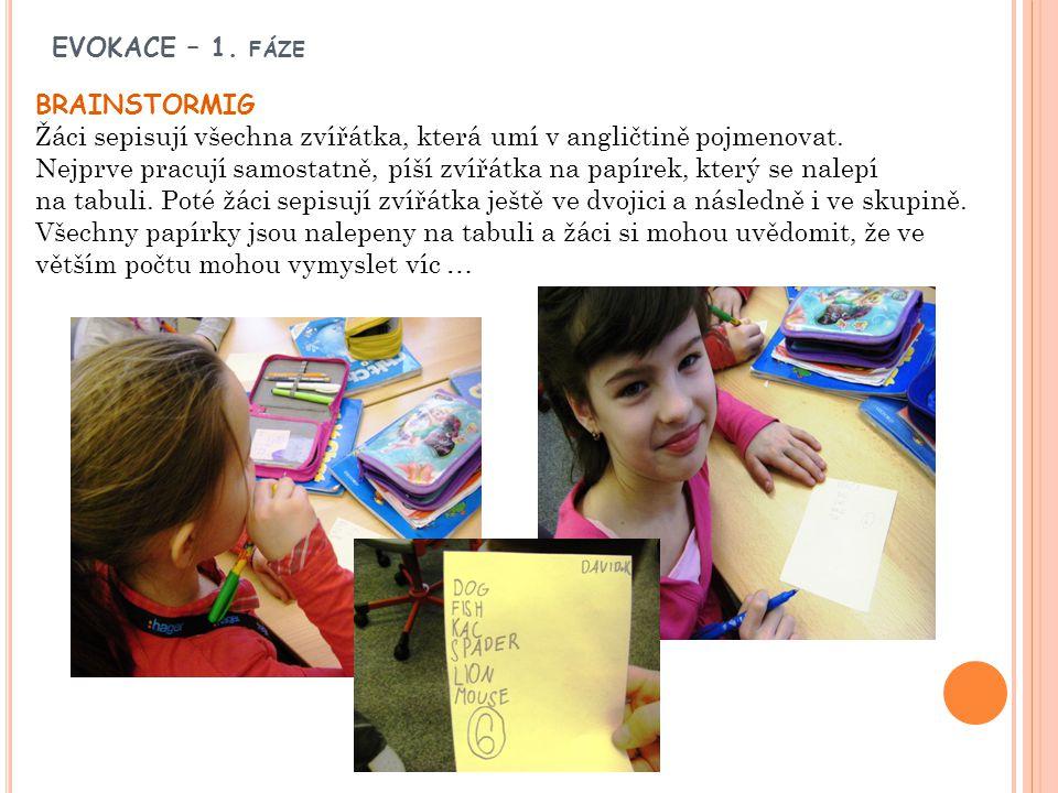 EVOKACE – 1. FÁZE BRAINSTORMIG Žáci sepisují všechna zvířátka, která umí v angličtině pojmenovat. Nejprve pracují samostatně, píší zvířátka na papírek