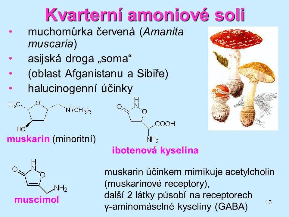 """13 Kvarterní amoniové soli muchomůrka červená (Amanita muscaria) asijská droga """"soma"""" (oblast Afganistanu a Sibiře) halucinogenní účinky muscimol ibot"""