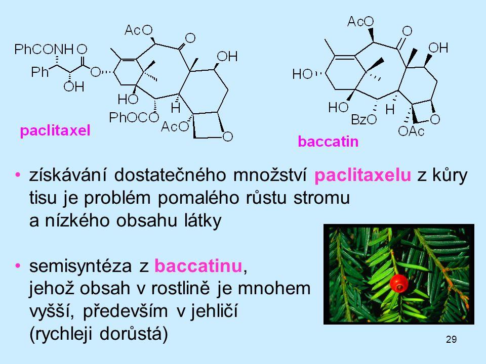 29 získávání dostatečného množství paclitaxelu z kůry tisu je problém pomalého růstu stromu a nízkého obsahu látky semisyntéza z baccatinu, jehož obsa