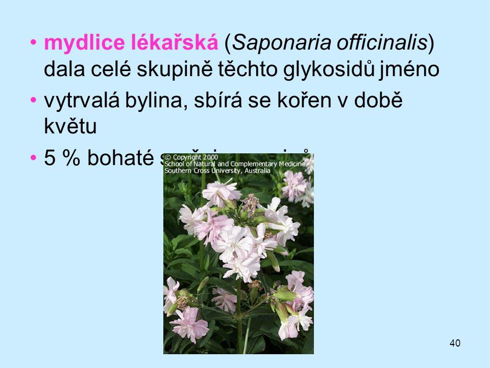 40 mydlice lékařská (Saponaria officinalis) dala celé skupině těchto glykosidů jméno vytrvalá bylina, sbírá se kořen v době květu 5 % bohaté směsi sap