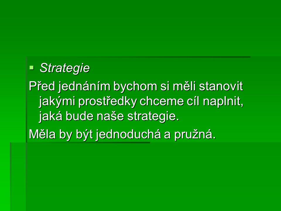  Strategie Před jednáním bychom si měli stanovit jakými prostředky chceme cíl naplnit, jaká bude naše strategie. Měla by být jednoduchá a pružná.