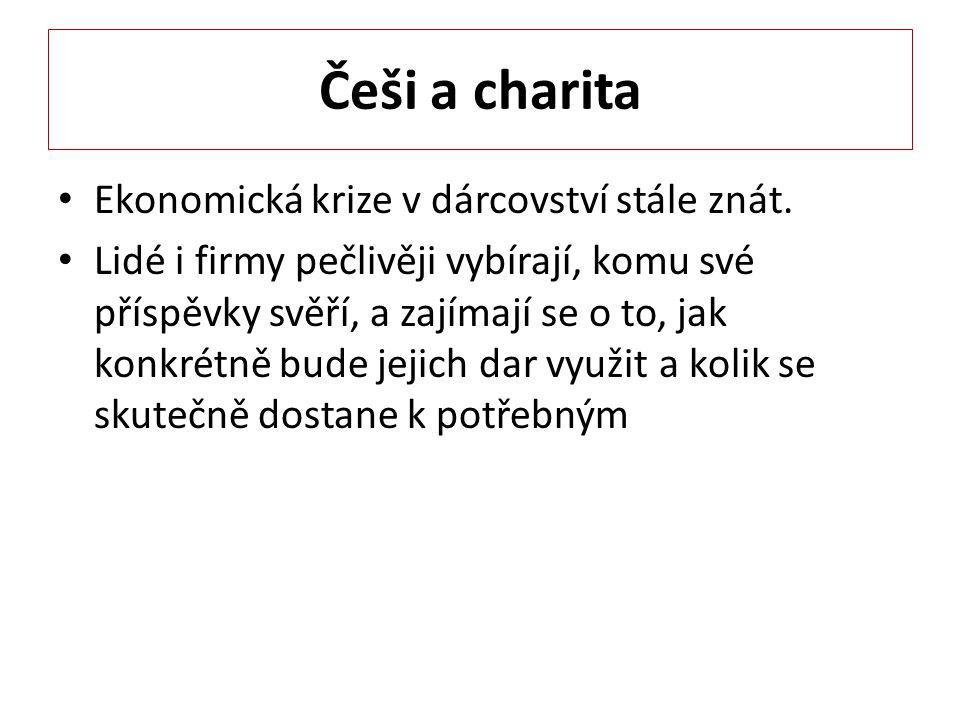 Češi a charita Ekonomická krize v dárcovství stále znát.