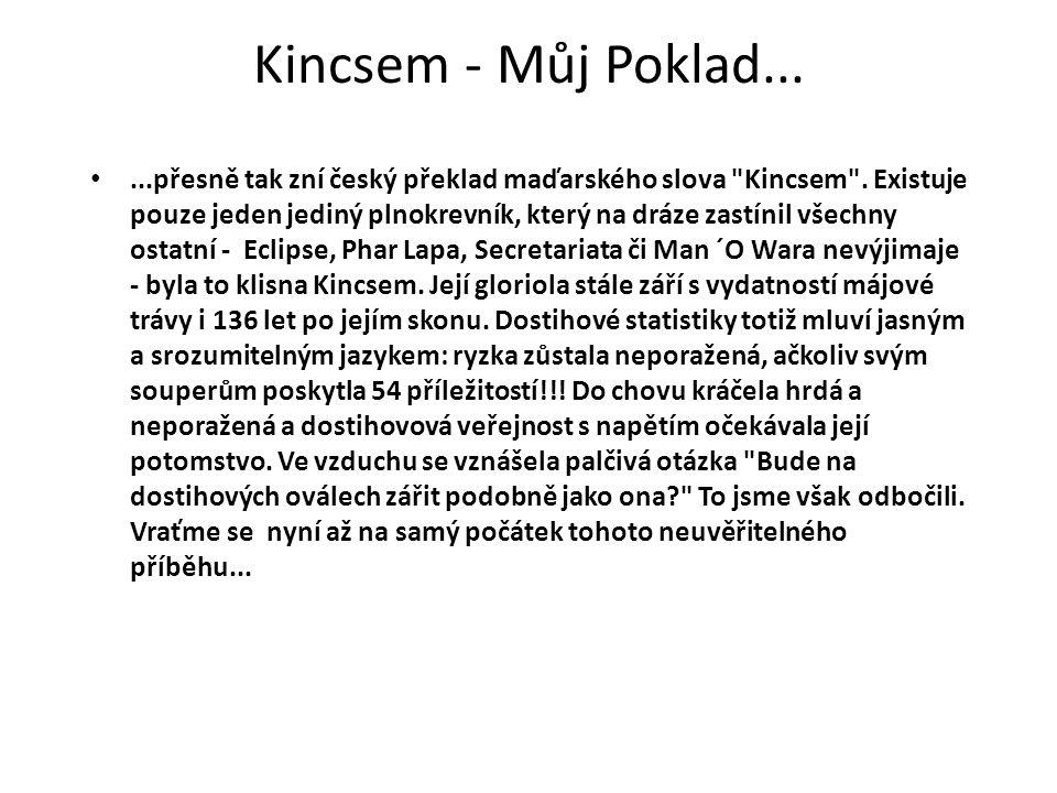 Kincsem - Můj Poklad......přesně tak zní český překlad maďarského slova