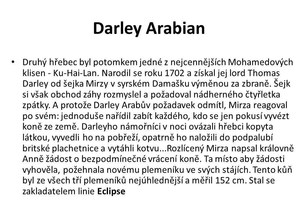 Darley Arabian Druhý hřebec byl potomkem jedné z nejcennějších Mohamedových klisen - Ku-Hai-Lan. Narodil se roku 1702 a získal jej lord Thomas Darley