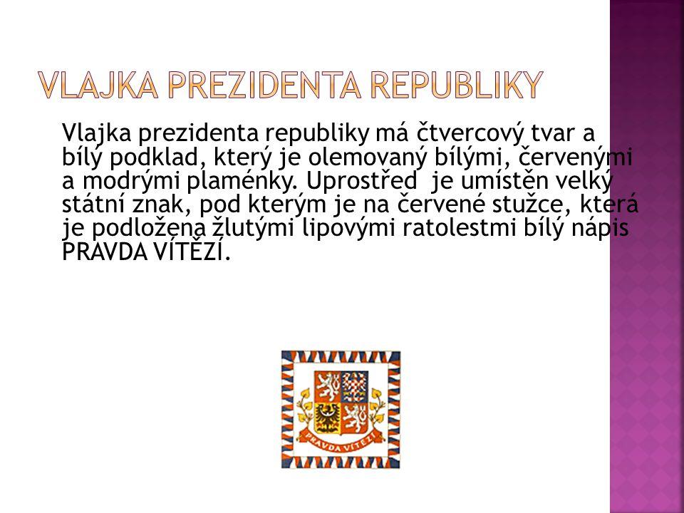 Vlajka prezidenta republiky má čtvercový tvar a bílý podklad, který je olemovaný bílými, červenými a modrými plaménky. Uprostřed je umístěn velký stát