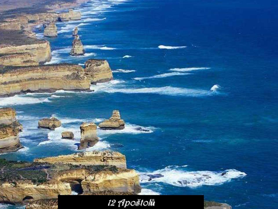Pob ř eží Tasmánie
