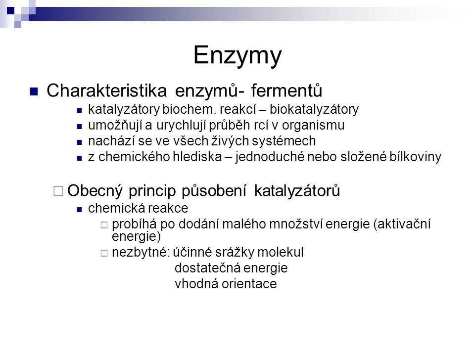 Enzymy Charakteristika enzymů- fermentů katalyzátory biochem. reakcí – biokatalyzátory umožňují a urychlují průběh rcí v organismu nachází se ve všech