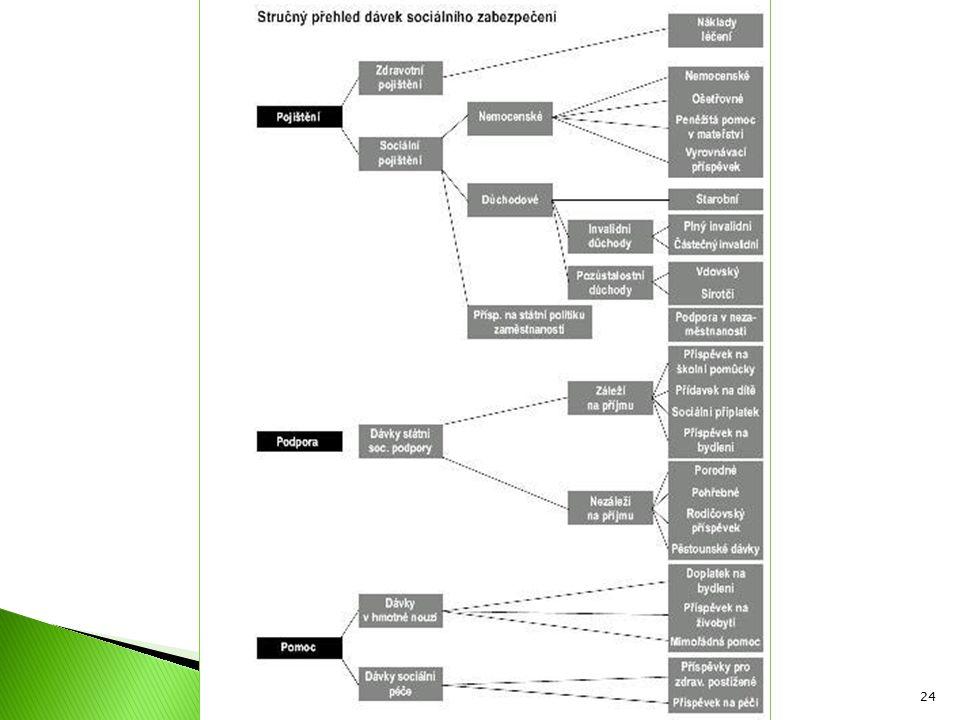 04 Sociální politika I. Jabok, ETF 2010 Michael Martinek24