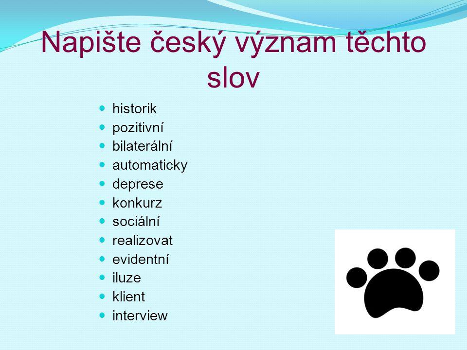Napište český význam těchto slov historik pozitivní bilaterální automaticky deprese konkurz sociální realizovat evidentní iluze klient interview