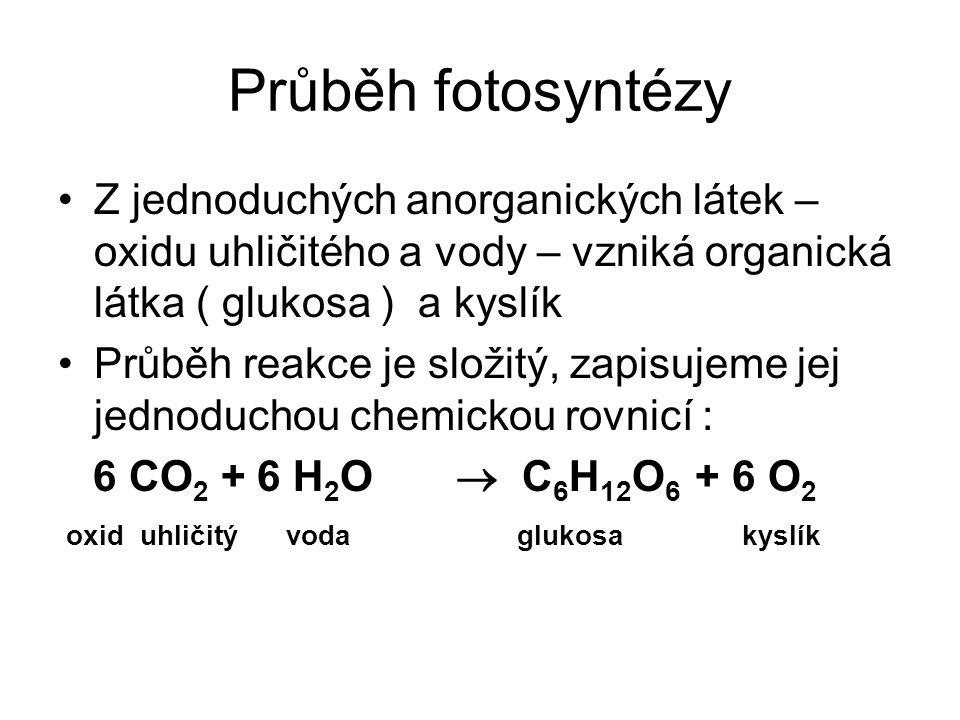 Průběh fotosyntézy Z jednoduchých anorganických látek – oxidu uhličitého a vody – vzniká organická látka ( glukosa ) a kyslík Průběh reakce je složitý, zapisujeme jej jednoduchou chemickou rovnicí : 6 CO 2 + 6 H 2 O  C 6 H 12 O 6 + 6 O 2 oxid uhličitý voda glukosa kyslík