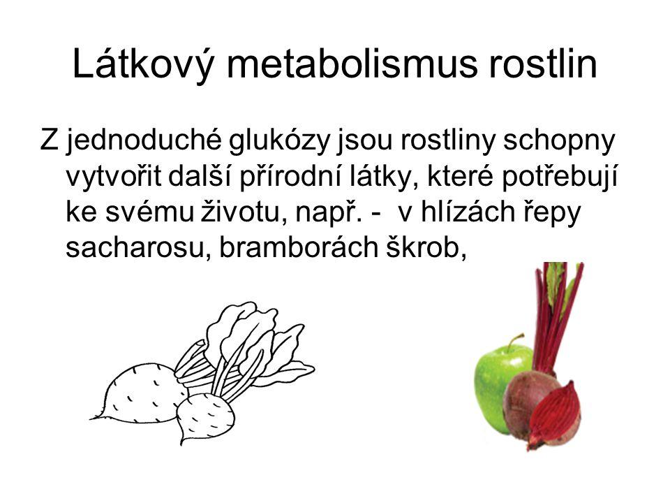 Látkový metabolismus rostlin Z jednoduché glukózy jsou rostliny schopny vytvořit další přírodní látky, které potřebují ke svému životu, např.