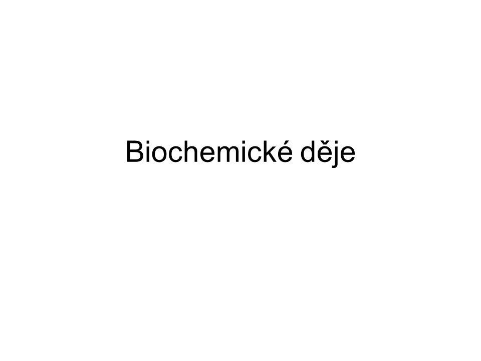 Biochemické děje