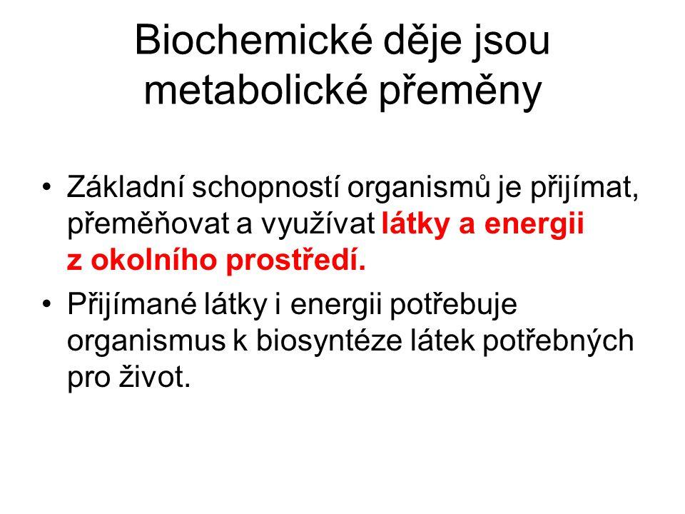 Biochemické děje jsou metabolické přeměny Základní schopností organismů je přijímat, přeměňovat a využívat látky a energii z okolního prostředí.