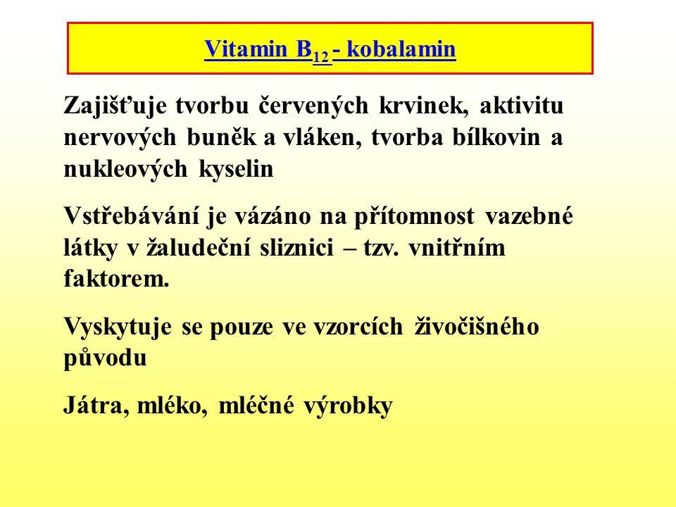 Vitamin B 12 - kobalamin Zajišťuje tvorbu červených krvinek, aktivitu nervových buněk a vláken, tvorba bílkovin a nukleových kyselin Vstřebávání je vá