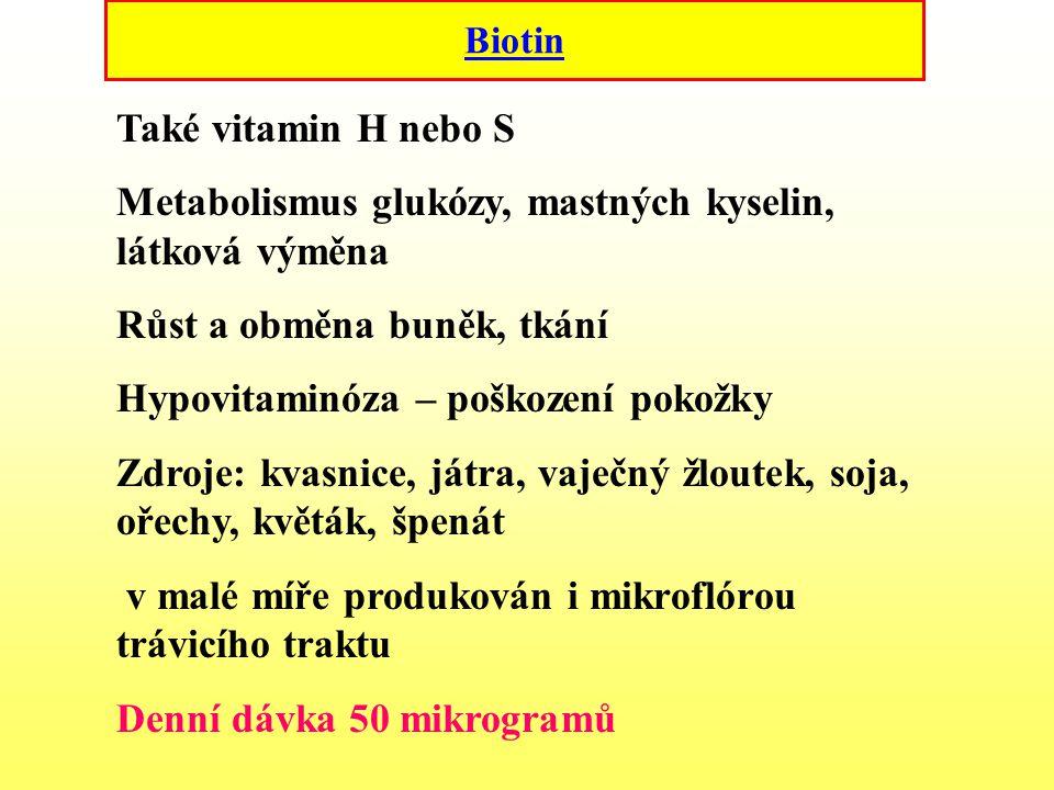 Biotin Také vitamin H nebo S Metabolismus glukózy, mastných kyselin, látková výměna Růst a obměna buněk, tkání Hypovitaminóza – poškození pokožky Zdro
