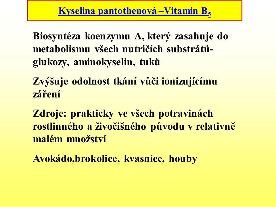 Kyselina pantothenová –Vitamin B 5 Biosyntéza koenzymu A, který zasahuje do metabolismu všech nutričích substrátů- glukozy, aminokyselin, tuků Zvýšuje
