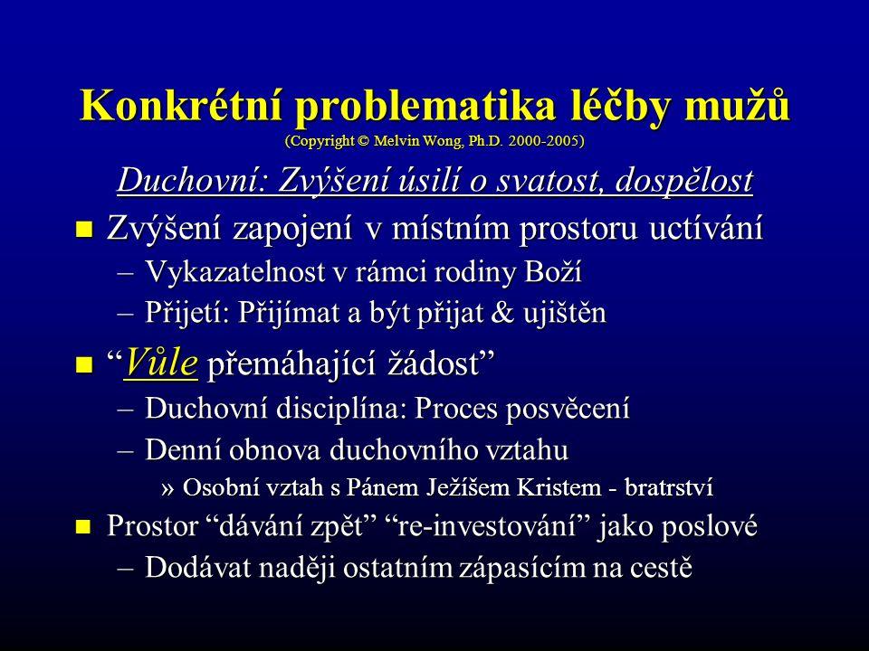 Konkrétní problematika léčby mužů (Copyright © Melvin Wong, Ph.D. 2000-2005) Duchovní: Zvýšení úsilí o svatost, dospělost Zvýšení zapojení v místním p
