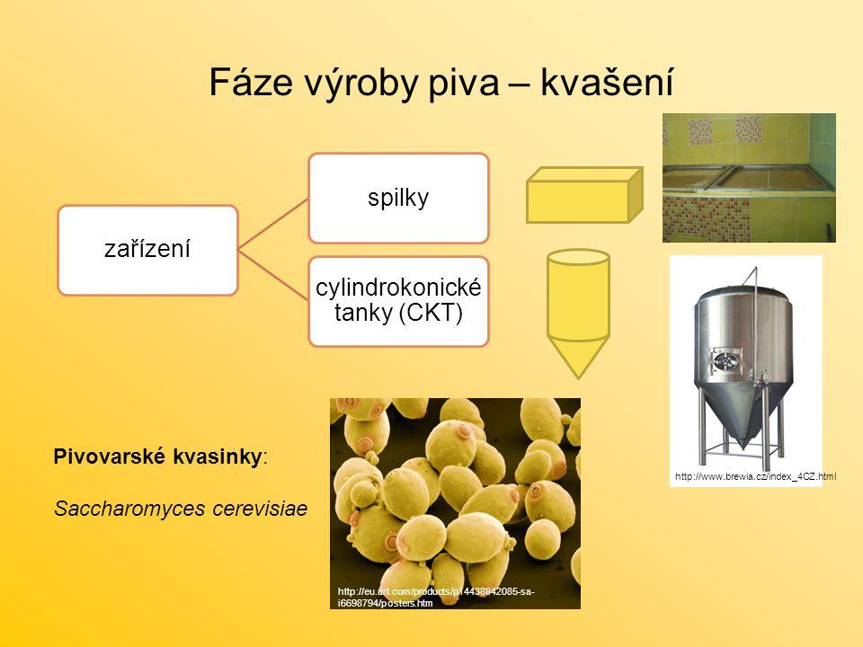 Fáze výroby piva – kvašení zařízeníspilky cylindrokonické tanky (CKT) Pivovarské kvasinky: Saccharomyces cerevisiae http://eu.art.com/products/p144388