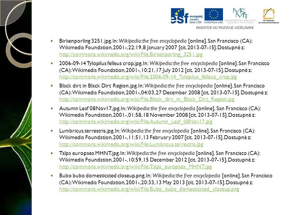 Birkenporling 3251.jpg.In: Wikipedia: the free encyclopedia [online].