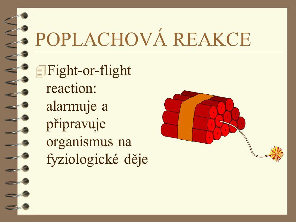 POPLACHOVÁ REAKCE 4 Fight-or-flight reaction: alarmuje a připravuje organismus na fyziologické děje
