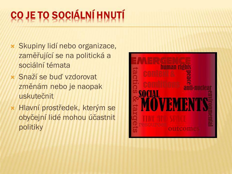  Skupiny lidí nebo organizace, zaměřující se na politická a sociální témata  Snaží se buď vzdorovat změnám nebo je naopak uskutečnit  Hlavní prostř